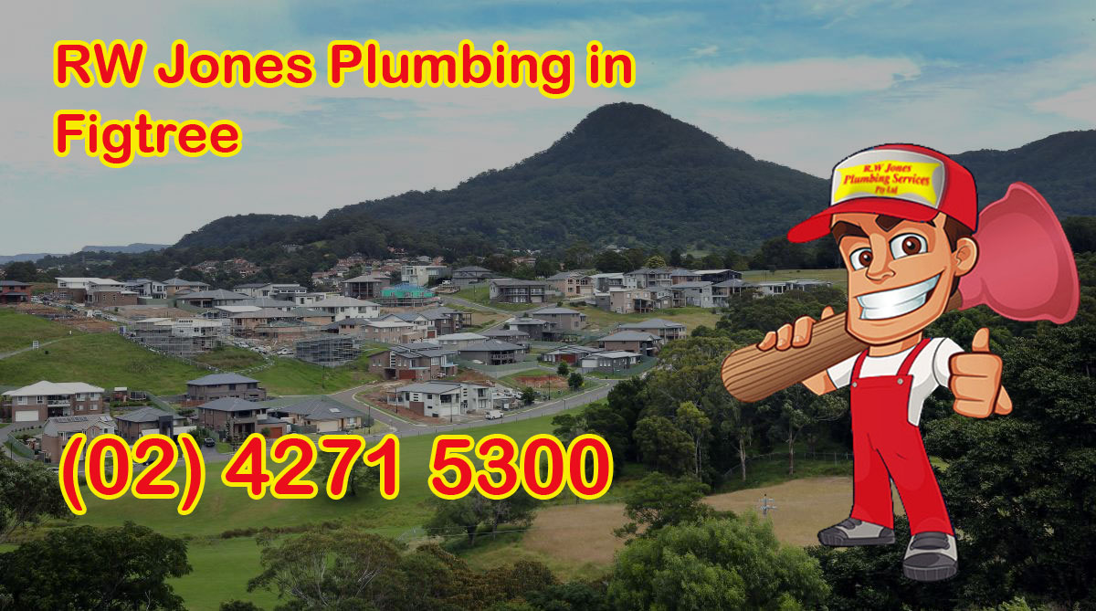RW Jones Plumbing - Profesionall plumbing services in Figtree